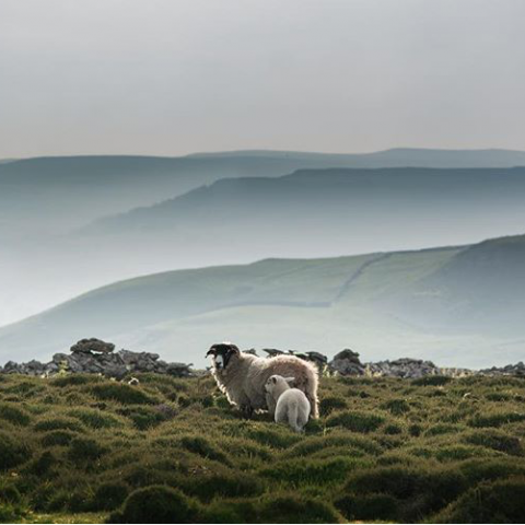 Yorkshire Dales by James Allinson