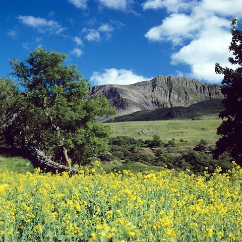 Cader Idris, Snowdonia National Park