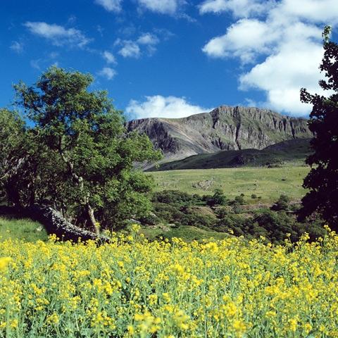 Cader Idris, Snowdonia National Park