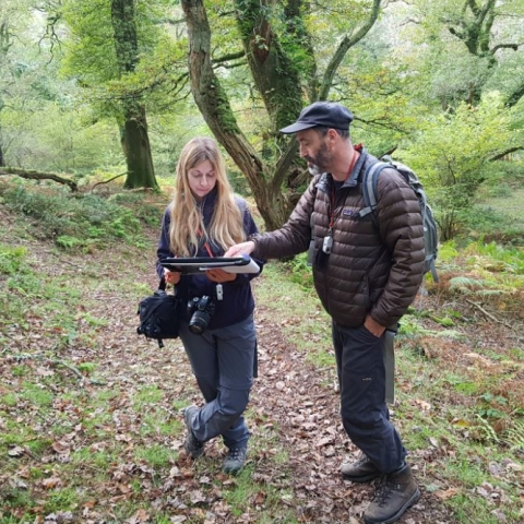 Dr Alison Smith carrying out the Rapid Woodland Assessment in Horner Wood on Exmoor.