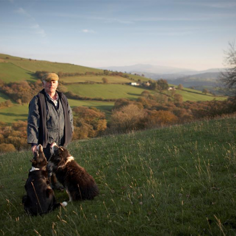 Farmer and his dogs. Photo credit: Brecon Beacons National Park Authority