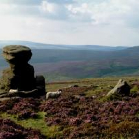 The Peak District, Derwent edge (credit PDNPA)