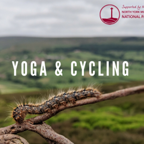 Carrie Froggett tells us about the unique experience of teaching Yoga in the North York Moors National Park.