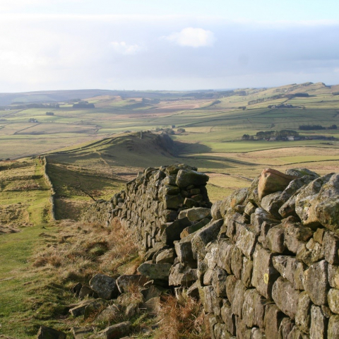 Hadrian's Wall by Dr Andrew Birley