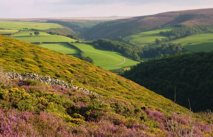 Doone Country In Exmoor National Park by John Starkey