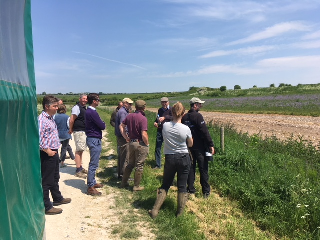 Eastern South Downs Farming Group on farmland birds training