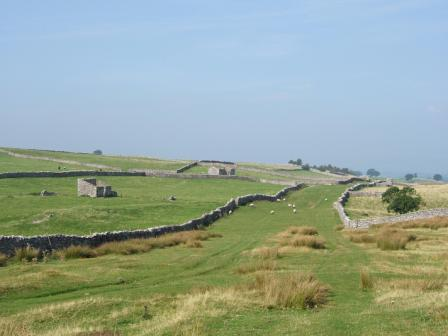 Green Gates is proposed for inclusion in the Yorkshire Dales extension (Colin Speakman)