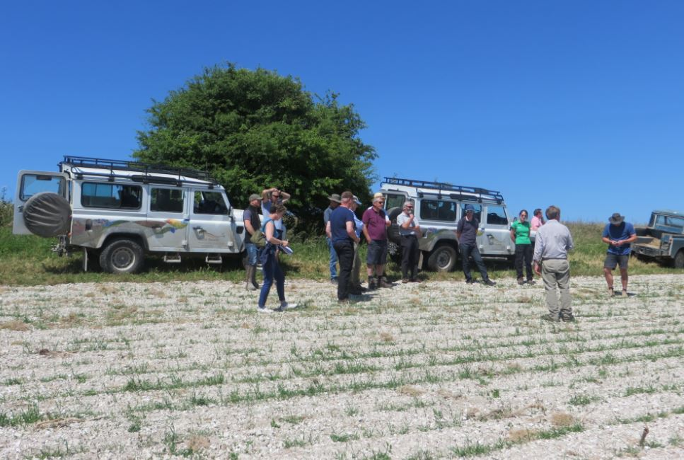 South Downs farming group on grey patridge training