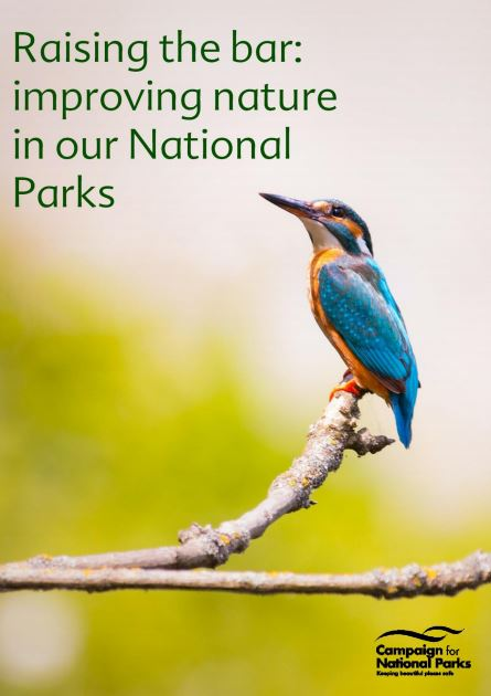Our new report looking at how to improve nature in our National Parks